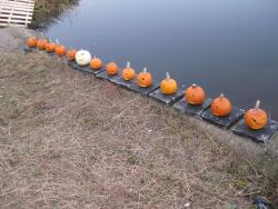 Neponset River Greenway 13th Annual Pumpkin Float