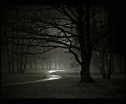 Halloween Night Hike-Franklin Park